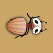 Catch Bugs - bug blitz 1.0.53