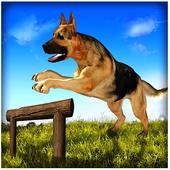 Dog Run Adventure Stunt Racing Simulator 3D 2017 1.0