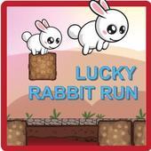 Lucky Rabbit Run 1.0