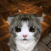 Cu Cat Maze Runner 1.3.1