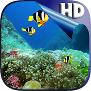 Colorful Fishes Live Wallpaper 3.0