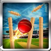cricket bowling 3d 2017 1.0