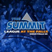 Summit Hoops 4.9.1.4372.1