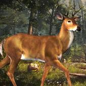 Deer Hunting Challenge 2016 ™ 1.0