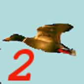 Birdhunt2 1.1