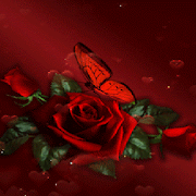 Dark Rose Butterfly LWP 2