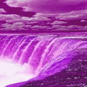 Purple Fall Live Wallpaper 2