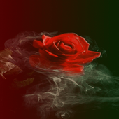 Smoky Rose Live Wallpaper 2