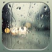 Rain Wallpapers 1.0