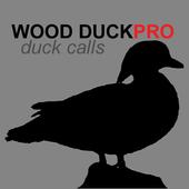 com.decoypro.woodduck icon