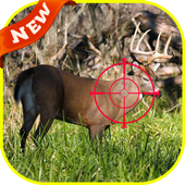 Deer Hunter Jungle 2016 3