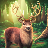 Deer Hunter Sniper Shooting 3D 1.1