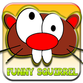 funny squirre