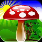Free Mushroom Games 1.0