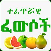 ኢስላማዊ ፈውሶች - Islamic Medicine 1.0
