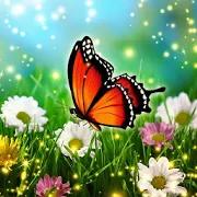 Hidden Object Adventure: Enchanted Spring Scenes
