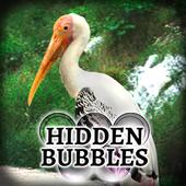 Hidden Bubbles: Forest Haven 1.0.3