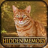 Hidden Memory - Cat Tailz 1.0