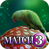 Match 3: Luck of the Irish 1.0.2