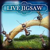 Live Jigsaws - Ant Farm 1.0.3