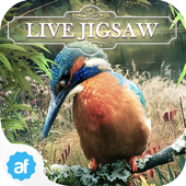 Live Jigsaws - Aviary Free 1.0.7
