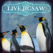 Live Jigsaws - Penguin Play 1.0.8