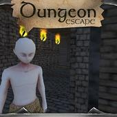 Dungeon Escape 3D Labyrinth 1.0