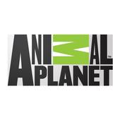 Animal Planet 1.1