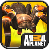 Real Scary Spiders 1.4.3
