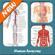Anatomy & Physiology 2019 1 40 36 APK Download - Android Education Apps