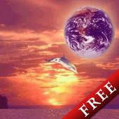 Dolphin HighJump Trial 2.5.0