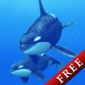 Cetacea Trial 1.0.0