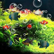 Aquarium Live Wallpaper 1.4