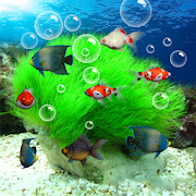 Aquarium 3D Live Wallpaper 2.9