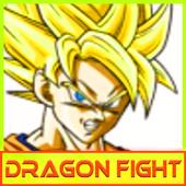 Dragon Fight Dragon Z Fighting