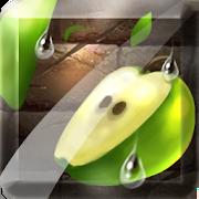 Fruit Slice 1.4.5