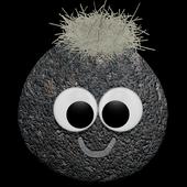 com.drynine.petrockmemory icon