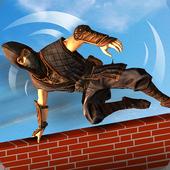 Real Ninja Warrior Amazing Run