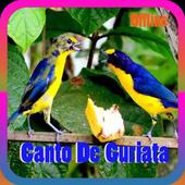 Canto de Guriata Mp3 2.0