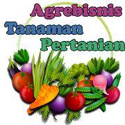 Vegetable Crop Agribusiness and cultivation 1.0
