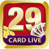 29 card game live! 1.1.7