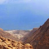 National Reserve of Ein Gedi 1.0