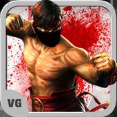 Kung Fu Vovinam 5.0