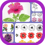 Learn to Draw Flowers 1.1