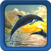 Dolphin Live Wallpapers 1.5