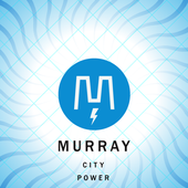 Murray Energy Conservation