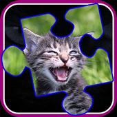 Kitty Cat Jigsaw PuzzlesEnsenaSoft, S.A. de C.VBoard