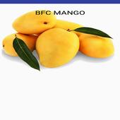 BFCMANGO 1.0