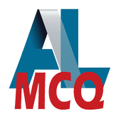 AL MCQ 1.2