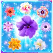 Blossom Blast Flowers 1.0